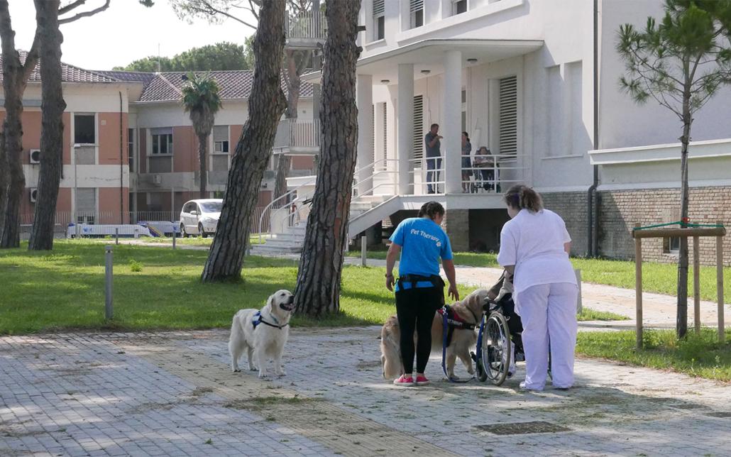 Le attività di pet therapy alla Fondazione Città di Senigallia